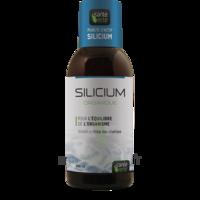 Santé Verte Silicium Solution buvable Fl/500ml à Paris