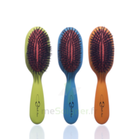 Cartel Brosse cheveux pneumatique Sanglier à Paris